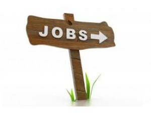 Ingatlan Budafok - Job